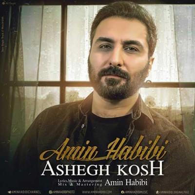 Amin Habibi Ashegh Kosh - دانلود آهنگ امین حبیبی به نام عاشق کش