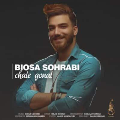 biosa sohrabi chale gonat 400x400 - دانلود آهنگ داریوش محمدی به نام قول میدم