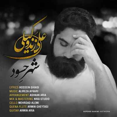 Ali Zand Vakili Shahre Hasood - دانلود آهنگ علی زند وکیلی به نام شهر حسود