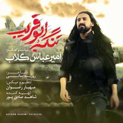 امیر عباس گلاب تنگه ابوقریب