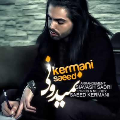 سعید کرمانی نمیدونی