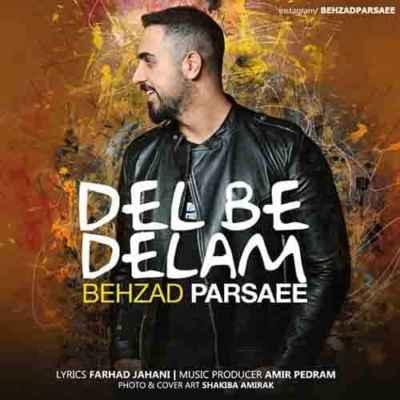 Behzad Parsaee  20190112 153 - دانلود آهنگ بهزاد پارسایی به نام دل به دلم