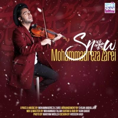 محمدرضا زارعی برف