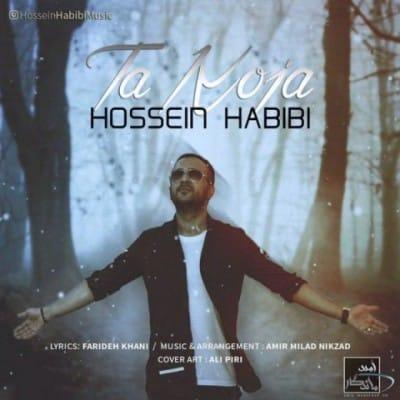 حسین حبیبی تا کجا