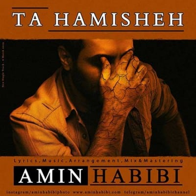 Amin Habibi Ta Hamisheh - دانلود آهنگ امین حبیبی به نام تا همیشه