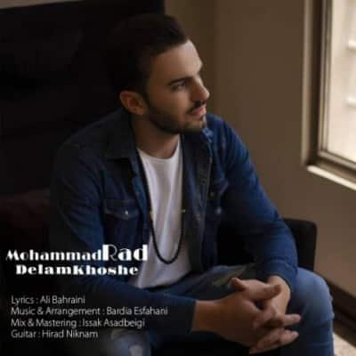 محمد راد دلم خوشه