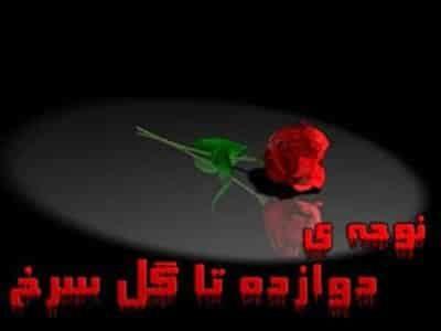مجید رمضان زاده دوازده تا گل سرخ