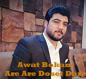Awat Bokani Are Are Doset Dare - دانلود آهنگ کردی آوات بوکانی به نام آره آره دوست داره