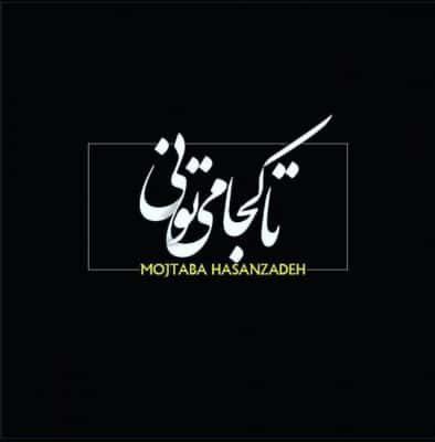 Mojtaba Hasanzadeh Ta Koja Mitooni 394x400 - دانلود آهنگ مجتبی حسن زاده به نام تا کجا میتونی