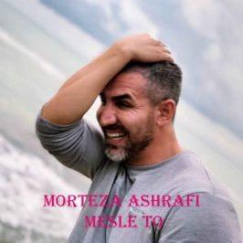 Morteza Ashrafi – Mesle To 266x266 - دانلود آهنگ علی نیکوکار به نام ببخش عزیزم