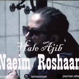Naeim Roshaan – Hale Ajib 266x266 - دانلود آهنگ سام و پویا به نام جالبه نه