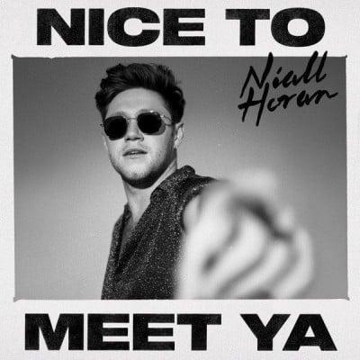 Niall Horan Nice to Meet Ya - دانلود آهنگ نایل هوران به نام Nice to Meet Ya