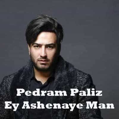 Pedram Paliz – Ey Ashenaye Man - دانلود آهنگ پدرام پالیز به نام ای آشنای من