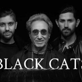 Black Cats7 266x266 - دانلود آهنگ بلک کتس به نام نبود تو