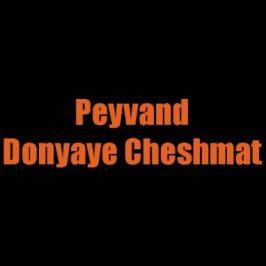 Peyvand – Donyaye Cheshmat 1 266x266 - دانلود آهنگ ترکی سیامک صاحبدل به نام olmuyor
