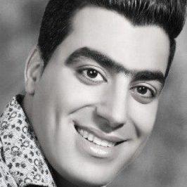 Sirous Jamshidi Douta Houredakam 266x266 - دانلود آهنگ آرش لطفی به نام دیوونه