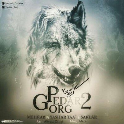 Mehrab – Gorg Pedar 2 400x400 - دانلود آهنگ مهراب به نام گرگ پدر ۲