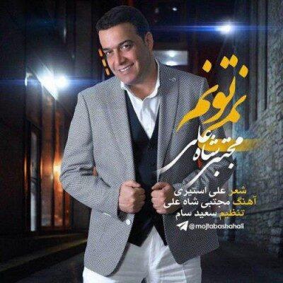 Mojtaba ShahAli 400x400 - دانلود آهنگ مجتبى شاه على به نام نمیتونم