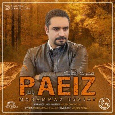 mohammad esalat paeiz 400x400 - دانلود آهنگ محمد اصالت به نام پاییز