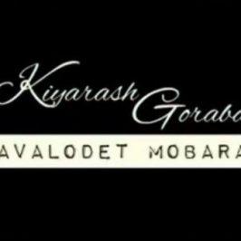 Kiyarash – Tavalodet Mobarak 266x266 - دانلود آهنگ علی سفلی به نام آرومم