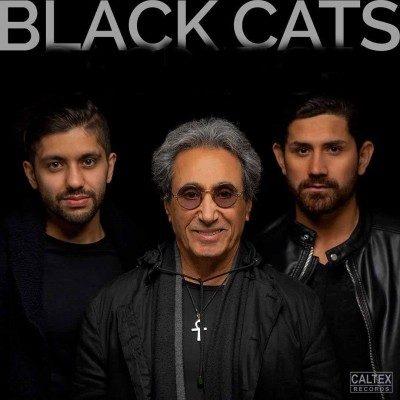 Black Cats Naaz 400x400 - دانلود آهنگ بلک کتس به نام ناز