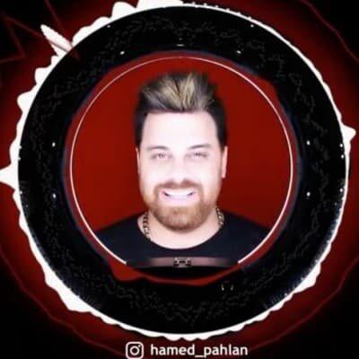 Hamed Pahlan – Hamino Mikhasti 400x400 - دانلود آهنگ جدید حامد پهلان قسم