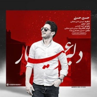 حسین حسنی دلبر عیار