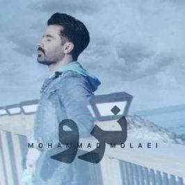 Mohammad Molaei – Naro 266x266 - دانلود آهنگ داریوش آذر به نام دیوانه جان