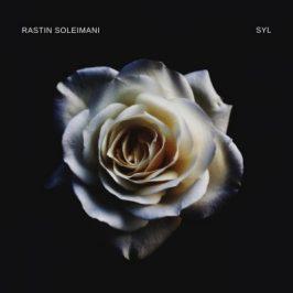 Rastin Soleimani Seyl 266x266 - دانلود آهنگ امیر عظیمی لیلی