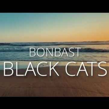 Black Cats – Bon Bast - دانلود آهنگ بلک کتس بن بست