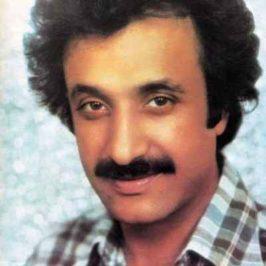 Hasan Shamaei Zadeh 266x266 - دانلود آهنگ حسن شماعی زاده من و گنجشکهای خونه
