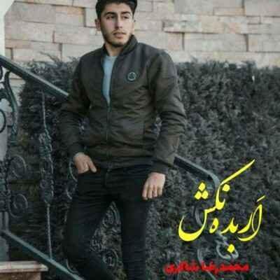 Mohamadreza Shakeri – Arbade Nakesh 400x400 - دانلود آهنگ مازنی محمدرضا شاکری اربده نکش
