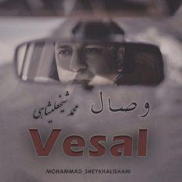 Mohammad Sheikhalishahi 266x266 - دانلود آهنگ امیرمحمد (عموپورنگ) به نام شلوار پلنگی