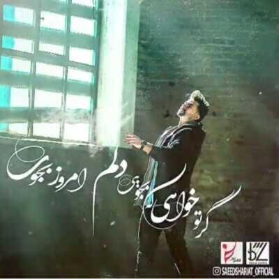 Saeed Shariat 400x400 - دانلود آهنگ کامل سعید شریعت گر تو خواهی که بجویی