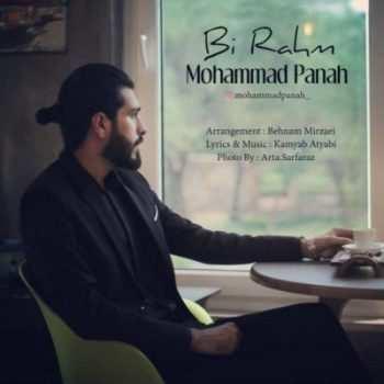 Mohammad Panah Bi Rahm 350x350 - دانلود آهنگ علیرضا طلیسچی منم از تو بریدم بات ته جاده رسیدم