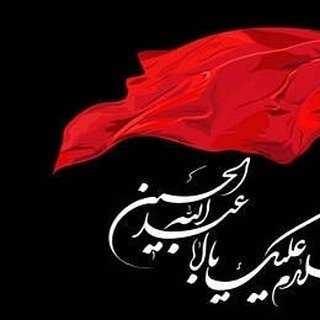 Reza 1 - دانلود نوحه لری رضا رمضانی حیران حسین