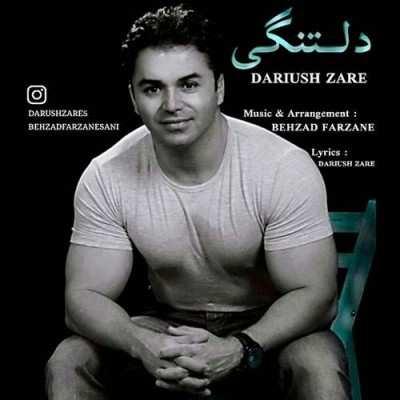Dariush Zare – Deltangi - دانلود آهنگ داریوش زارع دلتنگی