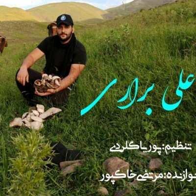 Ali Berari Sahraei Mardi - دانلود آهنگ مازنی علی براری صحرایی مردی