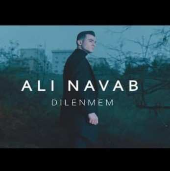 Ali Navab 2 - دانلود موزیک ویدئو علی نواب دیلنمم