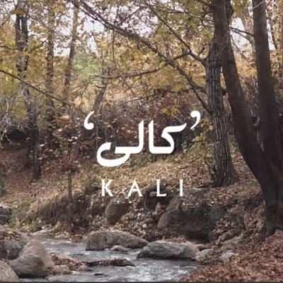 Shirzad Jarahi Mehdi Khodadadi Kali - دانلود آهنگ کردی شیرزاد جراحی و مهدی خدادادی کالی