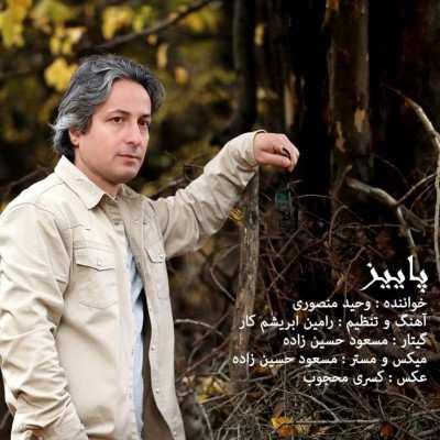 Vahid 2 - دانلود آهنگ وحید منصوری پاییز