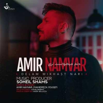 Amir Namvar – Delam Mikhast Nari - دانلود آهنگ امیر نامور دلم میخواست نری