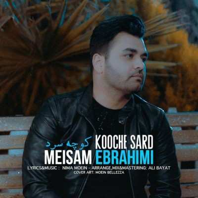 Meisam 1 - دانلود آهنگ میثم ابراهیمی کوچه سرد