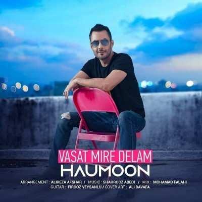 Haumoon – Vasat Mire Delam - دانلود آهنگ هامون واست میره دلم