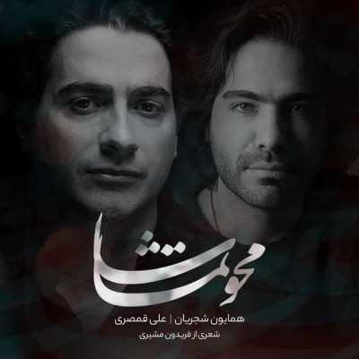 Homayoun Shajarian Mahve Tamasha - دانلود آهنگ همایون شجریان محو تماشا