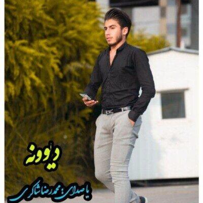 Mohammad 2 400x400 - دانلود آهنگ محمدرضا شاکری دیوونه