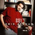 Omid Afkham 120x120 - دانلود ریمیکس دانوش لکنت