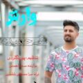 Ali Hamidi 120x120 - دانلود آهنگ دانیال هوشیاری زور زونیلم