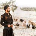 Milad Gholami 120x120 - دانلود آهنگ مهدی یعقوبی عیار