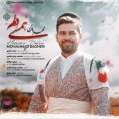 دانلود آهنگ محمد باقری همسی دلم